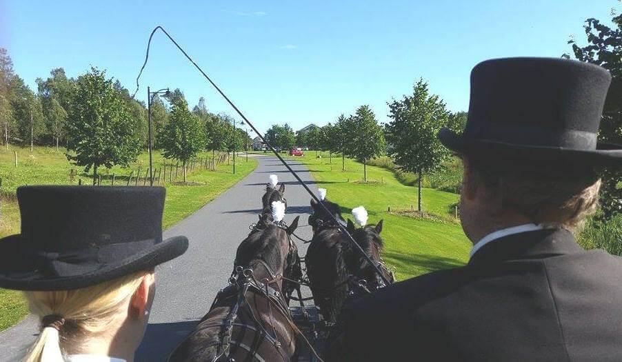 Hest og vogn Losby Gods